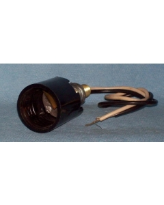 Unidentified MFG - 5-331 - Lamp, socket. 120VAC. Complete wired.